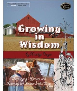 Level 5- Growing in Wisdom Bible Study E-book