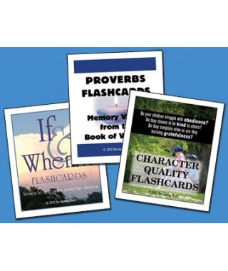 Make Wise Choices Flashcard Set