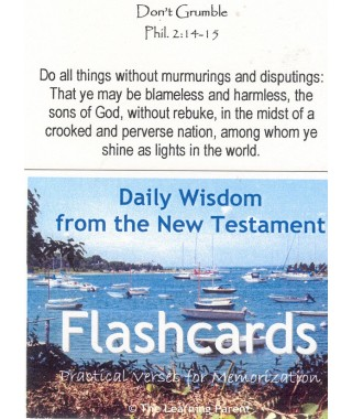 Daily Wisdom from the New Testament Flashcards