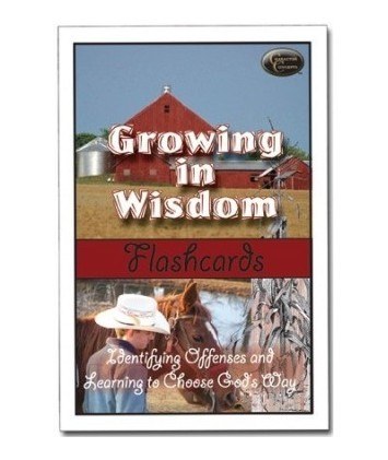 Growing in Wisdom Flashcards [Downloadable]